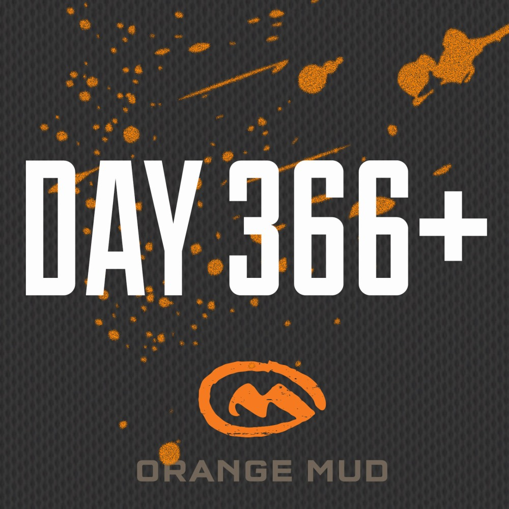 Day 366+